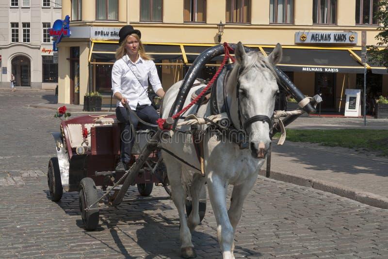 Cabby in Riga royalty free stock photo