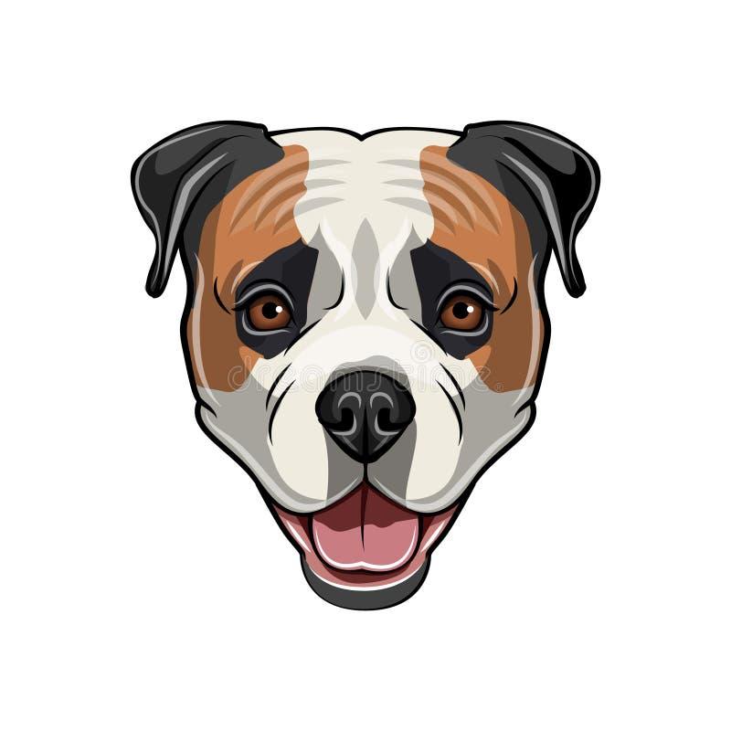 Cabeça americana do buldogue Retrato retro Buldogue americano bonito Cara do cão Vetor ilustração do vetor