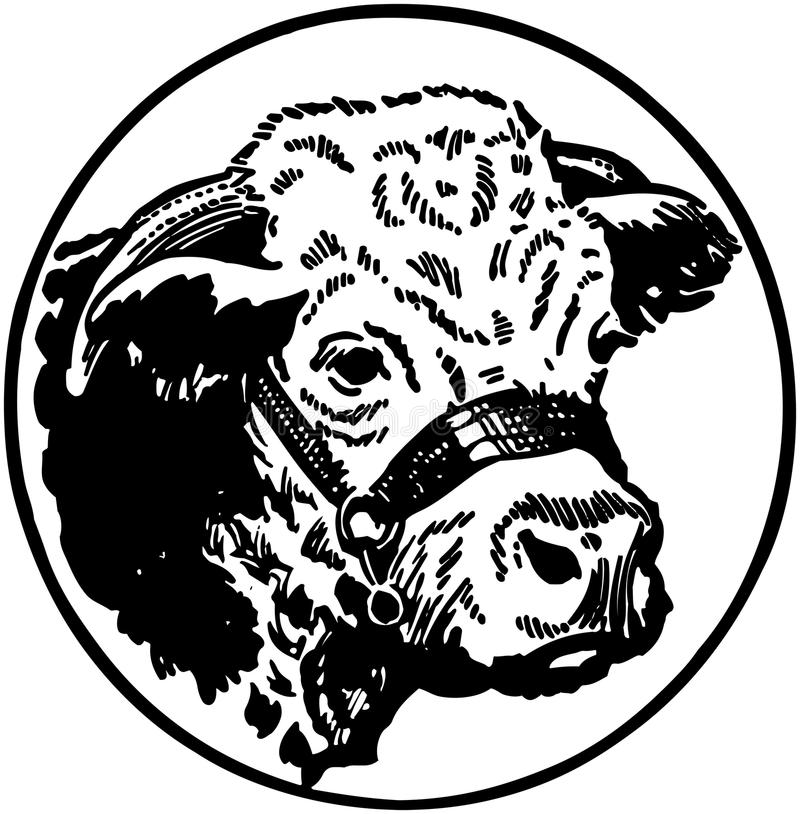Cabeça das vacas ilustração do vetor