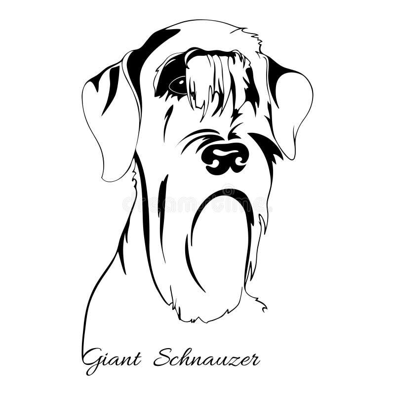 Cabeça de cão do Schnauzer gigante ilustração royalty free