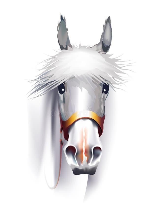 Cabeça de cavalo branco ilustração stock