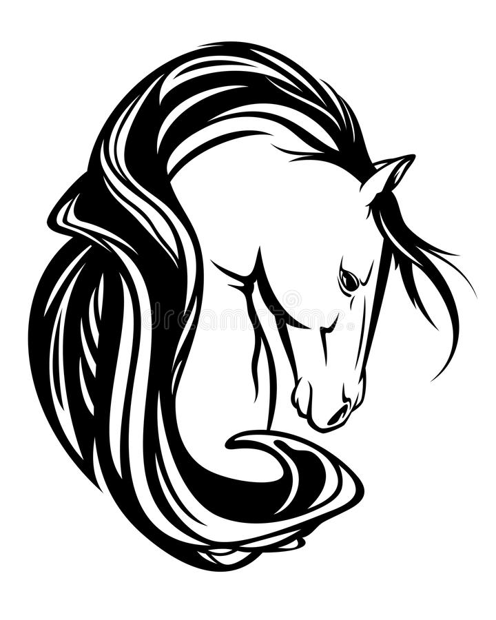 Cabeça de cavalo com projeto preto e branco do vetor da juba longa ilustração royalty free