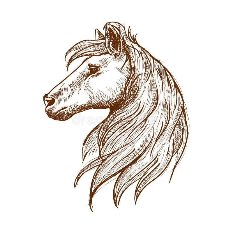 Cabeça de cavalo selvagem com esboço de fluxo do vintage da juba ilustração do vetor