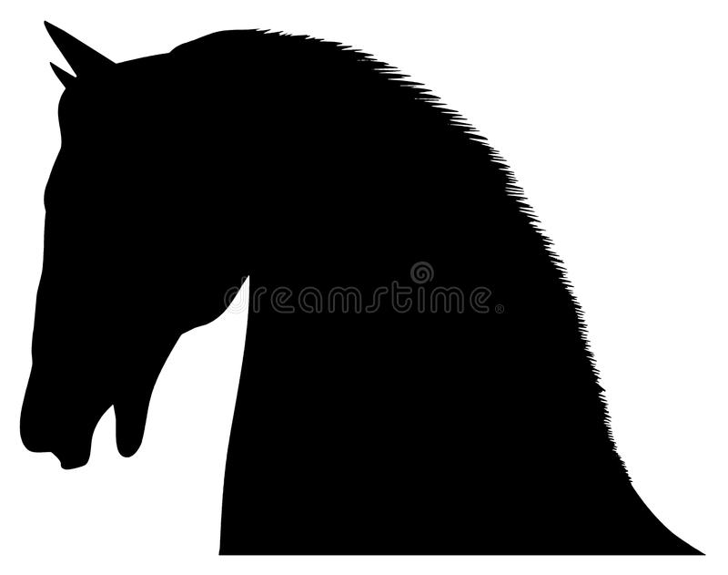 Cabeça de cavalos ilustração stock