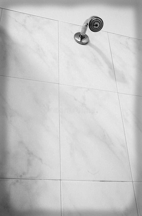 Cabeça de chuveiro na cuba do banheiro imagens de stock royalty free