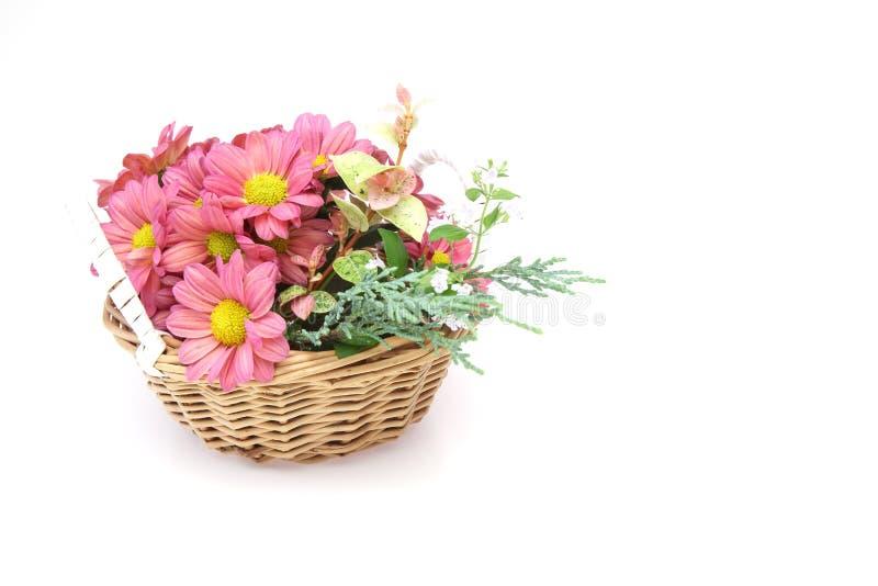 Cabeça de flor do crisântemo na cesta fotos de stock royalty free
