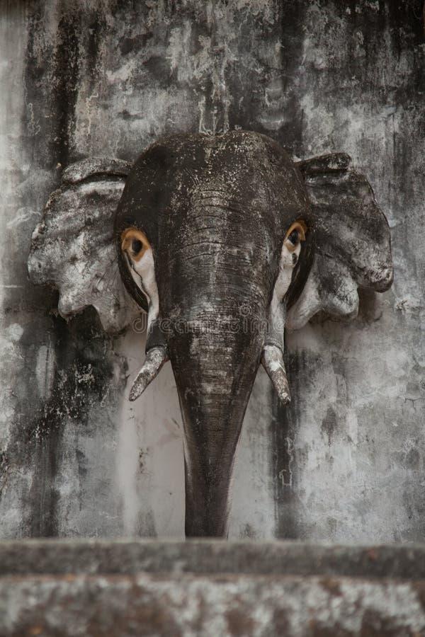 Cabeça de pedra de um elefante fotografia de stock