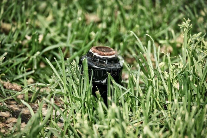 Cabe?a de sistema de extin??o de inc?ndios do gramado na grama imagens de stock