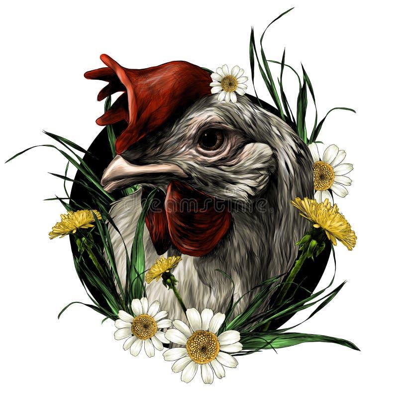 a cabeça de um galo cercado por flores selvagens grama dentes-de-leão e composição das margaridas ilustração royalty free