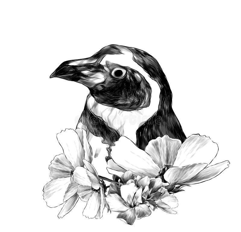 A cabeça de um pinguim lateralmente no perfil ilustração royalty free