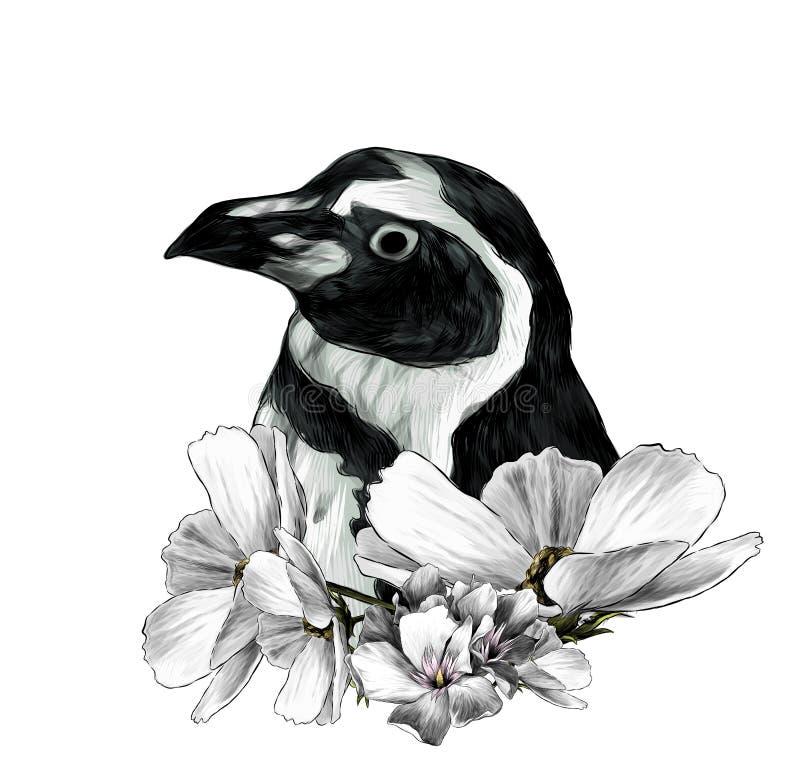 A cabeça de um pinguim lateralmente no perfil ilustração stock