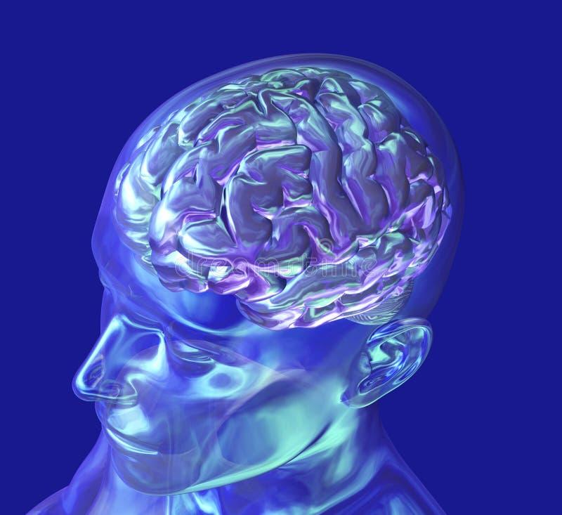 Cabeça de vidro com cérebro - de acima ilustração stock
