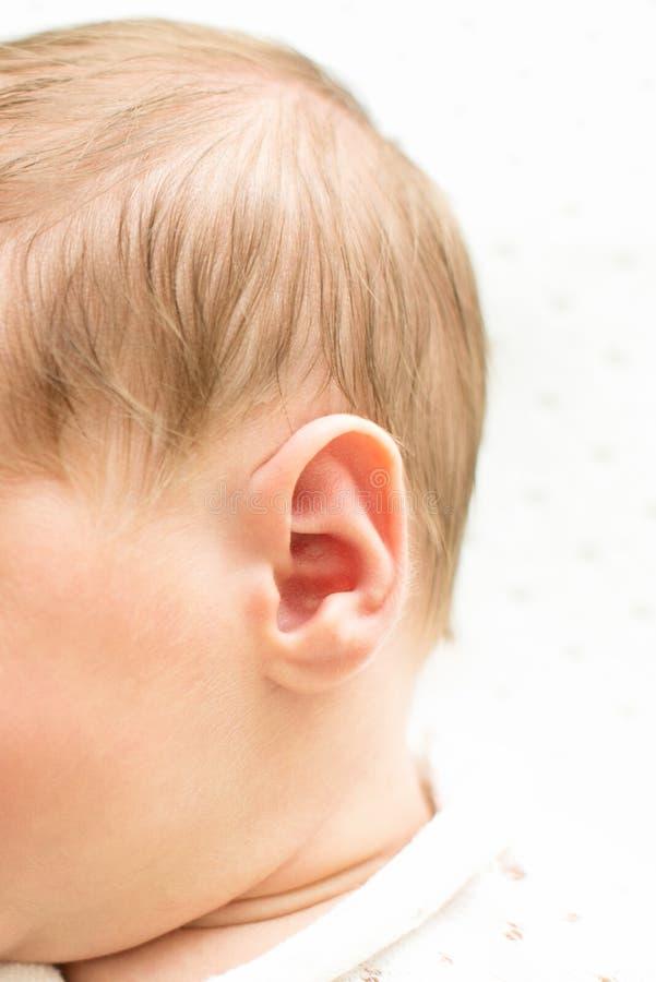 A cabeça do bebê recém-nascido ouve-se primeiramente no fundo branco, fim da orelha do bebê acima, tiro macro da prótese auditiva foto de stock