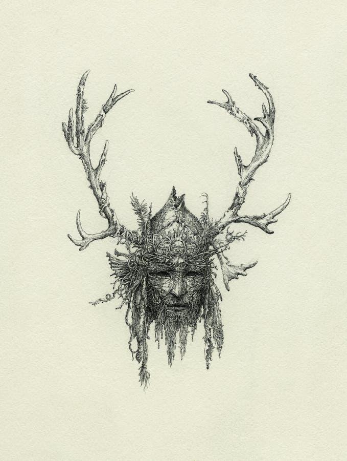 Cabeça do curandeiro ilustração stock