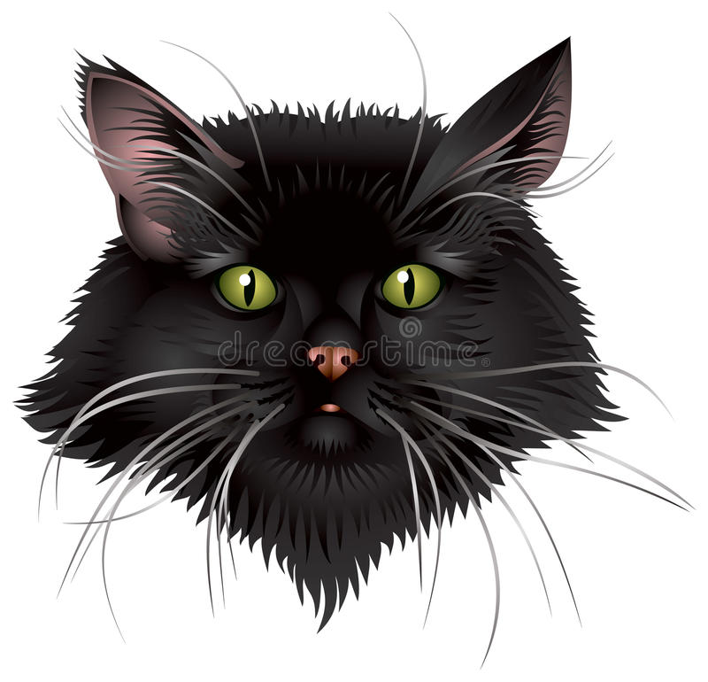 Cabeça do gato preto ilustração do vetor