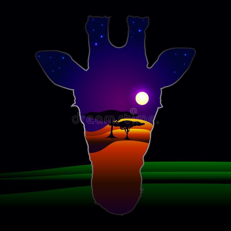 A cabeça do girafa fotografia de stock royalty free