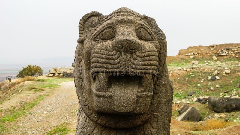Cabeça do leão do basalto, templo Aleppo de Ain Dara, Síria foto de stock royalty free