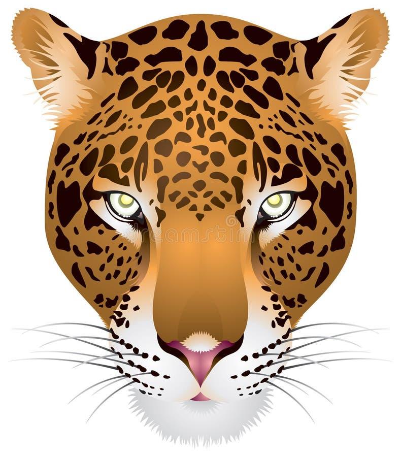 Cabeça do leopardo dentro   ilustração royalty free