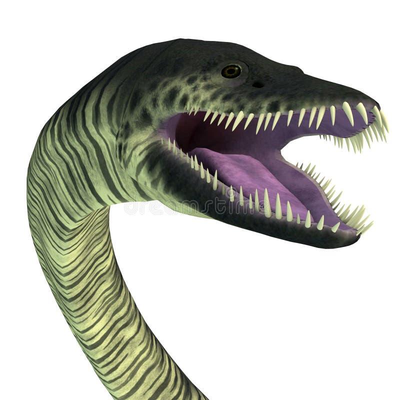 Cabeça do réptil do Elasmosaurus ilustração do vetor
