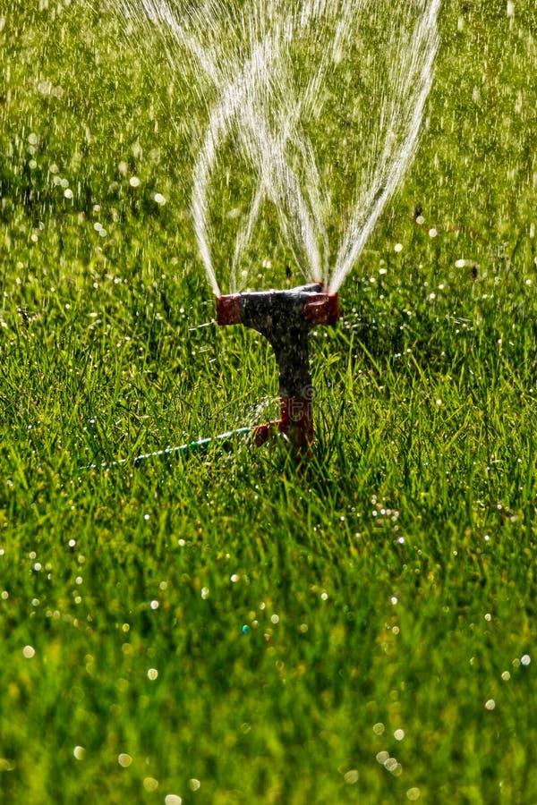 Cabeça do sistema de extinção de incêndios do gramado com fluxo da mosca da água em um ar imagens de stock