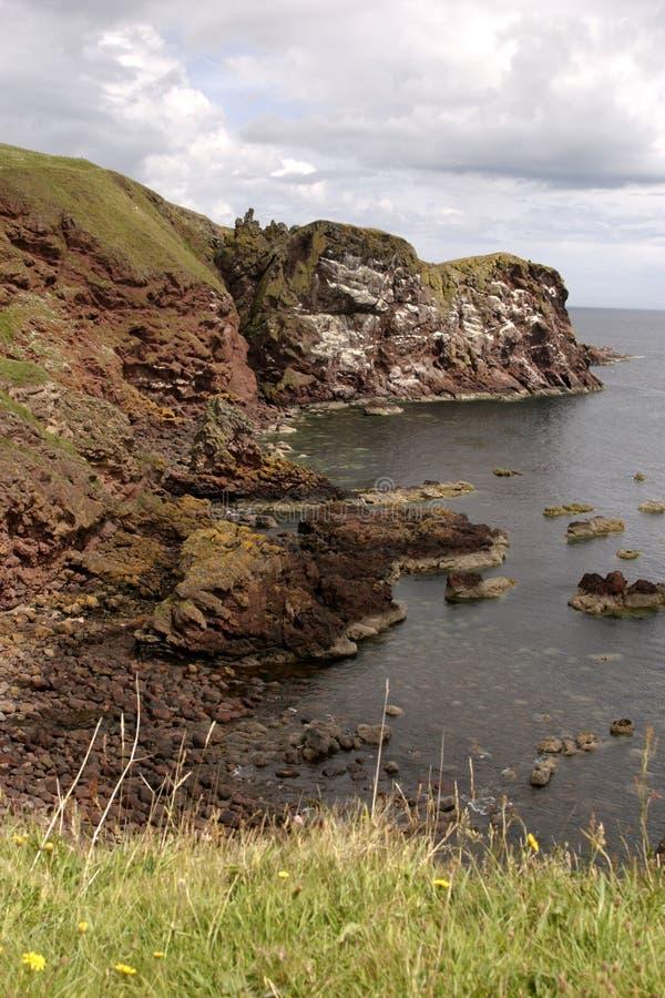 Download Cabeça do St Abbs foto de stock. Imagem de scotland, água - 537678
