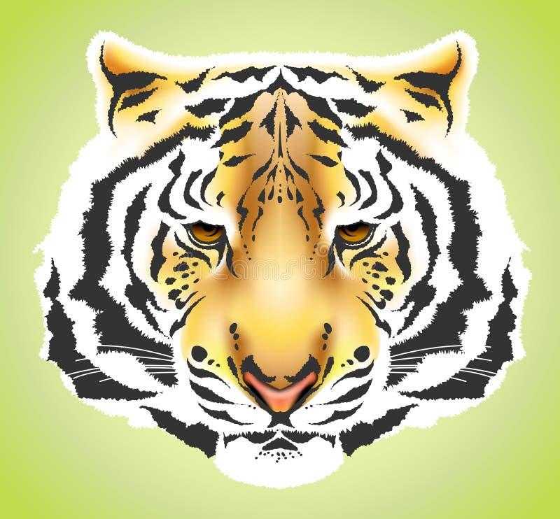 Cabeça do tigre - alta qualidade ilustração stock