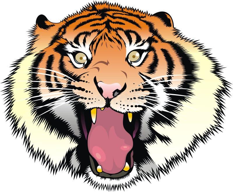 Cabeça do tigre isolada ilustração do vetor