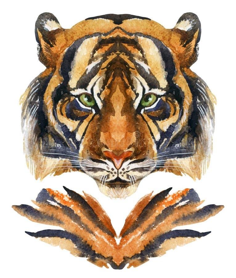 Cabeça do tigre isolada no fundo branco ilustração royalty free