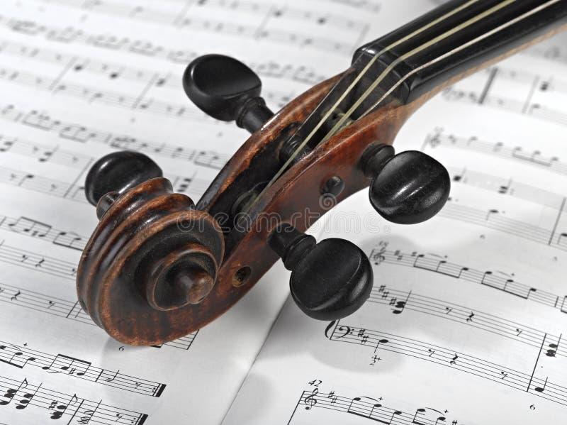 Cabeça do violino fotografia de stock