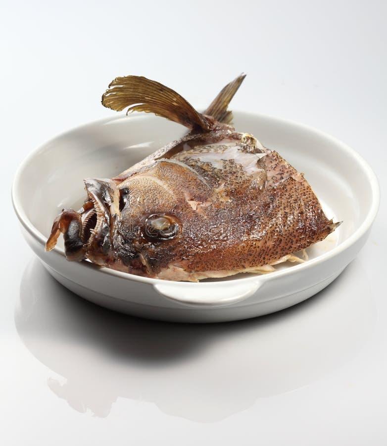 Cabeça dos peixes imagem de stock