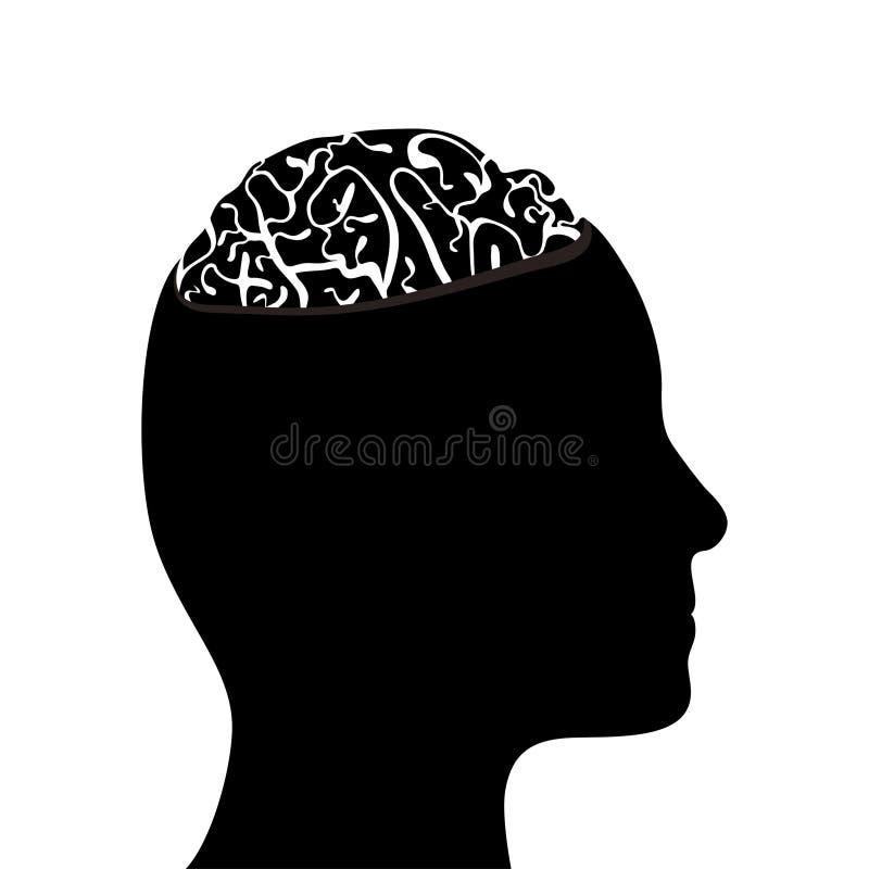 Cabeça e cérebro mostrados em silhueta ilustração royalty free