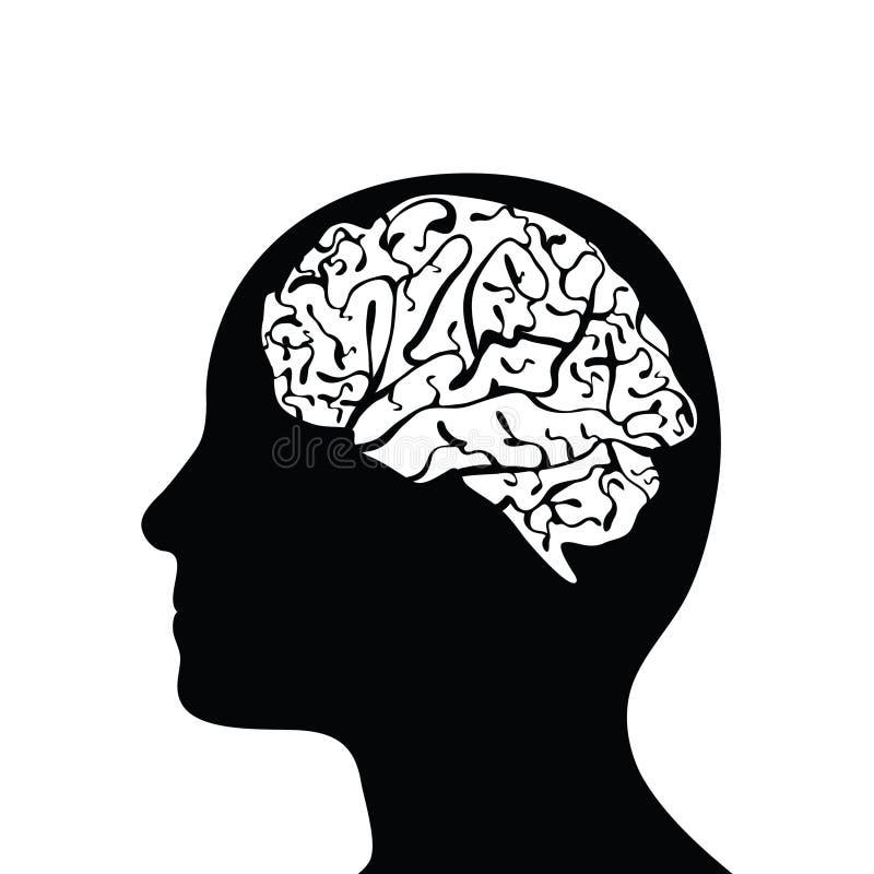 Cabeça e cérebro mostrados em silhueta ilustração do vetor