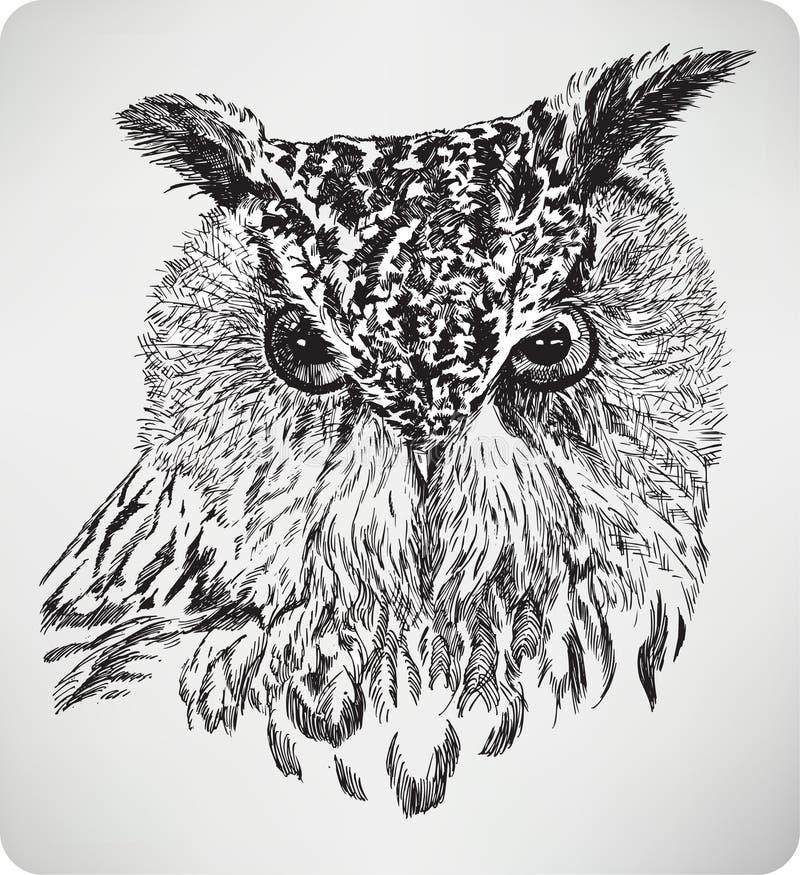 A cabeça Eagle Owl do pássaro, mão que tira, ilustração do vetor ilustração stock