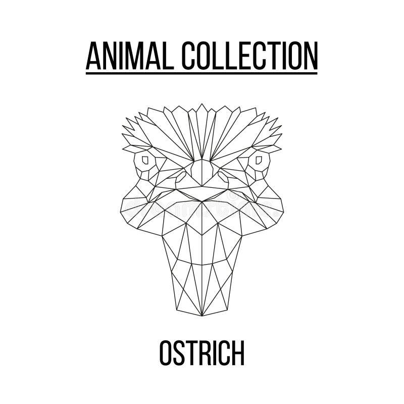 Cabeça geométrica da avestruz imagens de stock royalty free