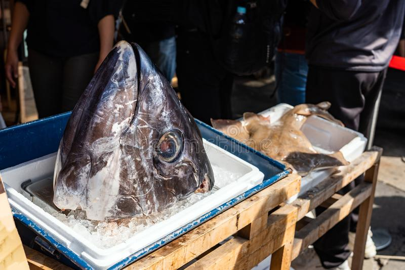 Cabeça gigante de Tuna Is On The Box do gelo no mercado de peixes imagens de stock royalty free