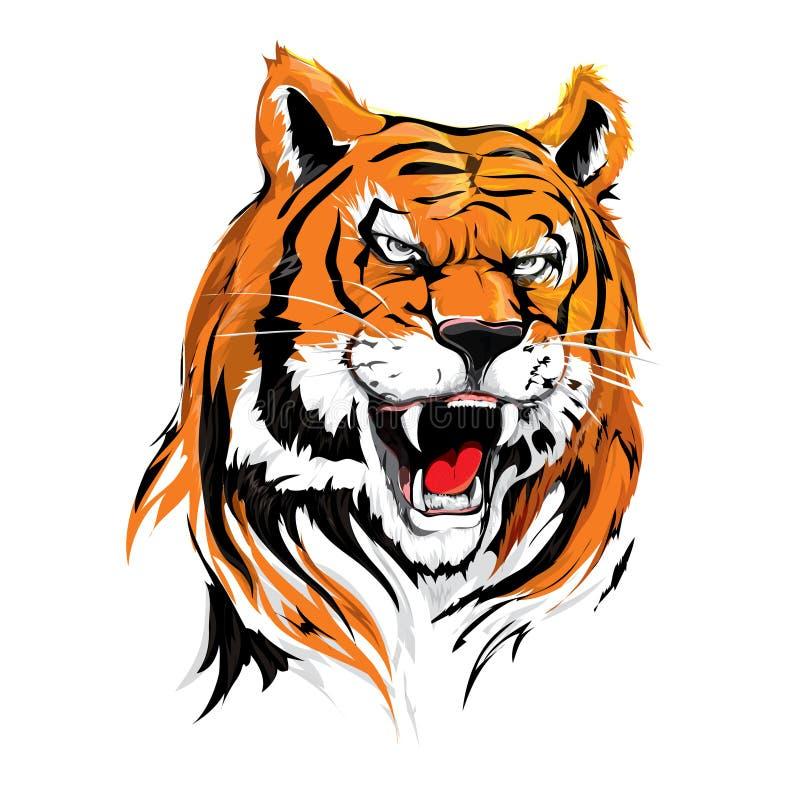Cabeça irritada Tiger Illustration Vetora no rugido para o cartaz, o projeto de cartão, o projeto etc. da tampa ilustração do vetor