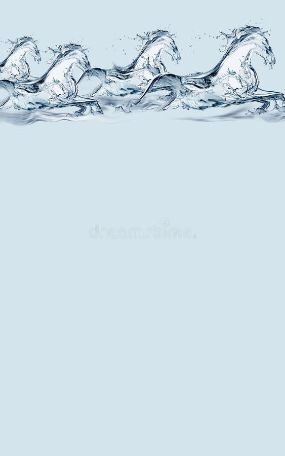 Cabecera de los caballos del agua imagen de archivo