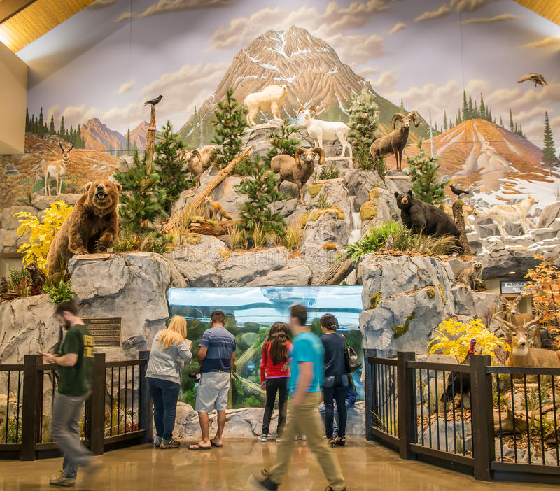 Cabela's opens its Lexington store on March 16, 2016. stock photo