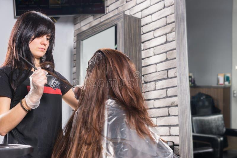 Cabeleireiro atrativo durante o processo de tingir o cabelo do fe novo foto de stock