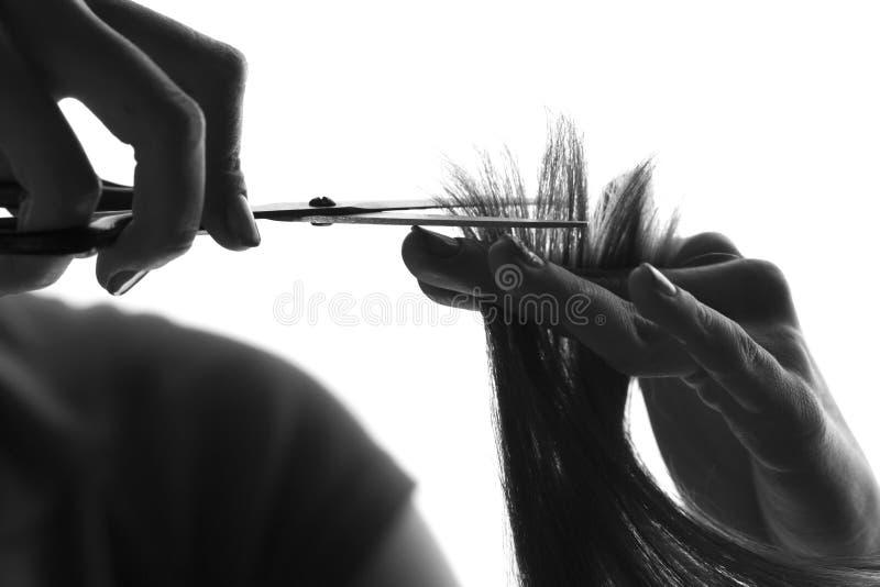 Cabeleireiro da silhueta que corta um cliente imagem de stock