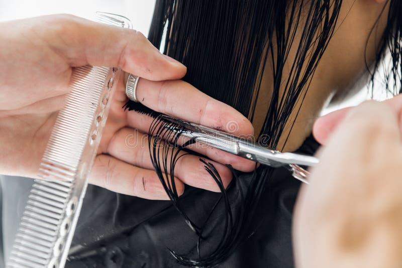 Cabeleireiro masculino anca profissional novo que corta o cabelo escuro da mulher do cliente no salão de beleza imagem de stock