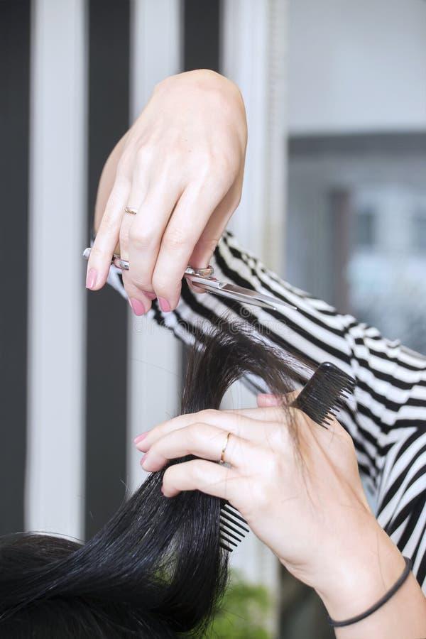 Cabeleireiro que trabalha com cabelo bonito da mulher cabeleireiro sa imagem de stock