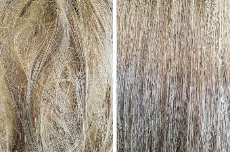 cabelo antes e depois do nivelamento imagem de stock royalty free