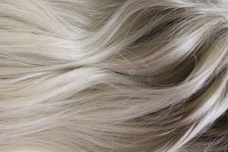 Cabelo bonito Cabelo louro curly longo Colorido com inclinação do louro para iluminar - o marrom imagem de stock