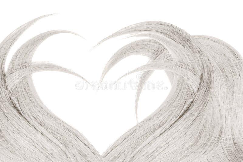 Cabelo cinzento na forma do coração, isolada no fundo branco imagem de stock