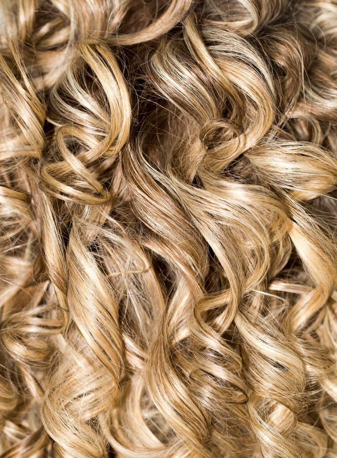 Cabelo Curly hairdressing onda Cabelo natural imagem de stock royalty free