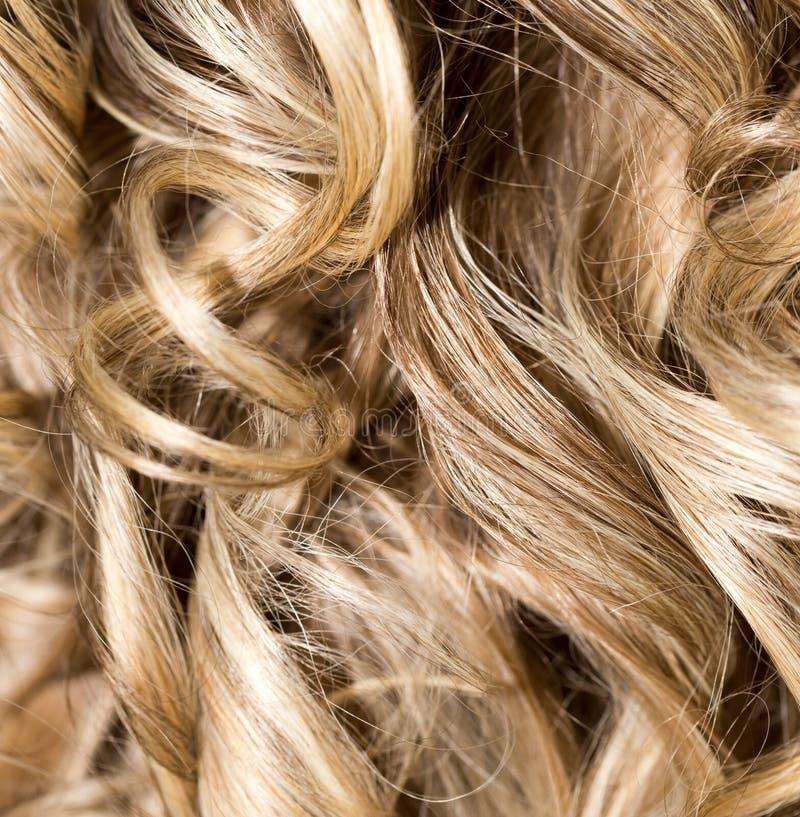 Cabelo Curly hairdressing onda Cabelo natural fotos de stock royalty free