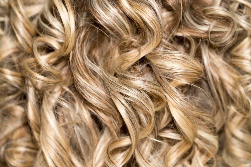 Cabelo Curly hairdressing onda Cabelo natural imagens de stock royalty free