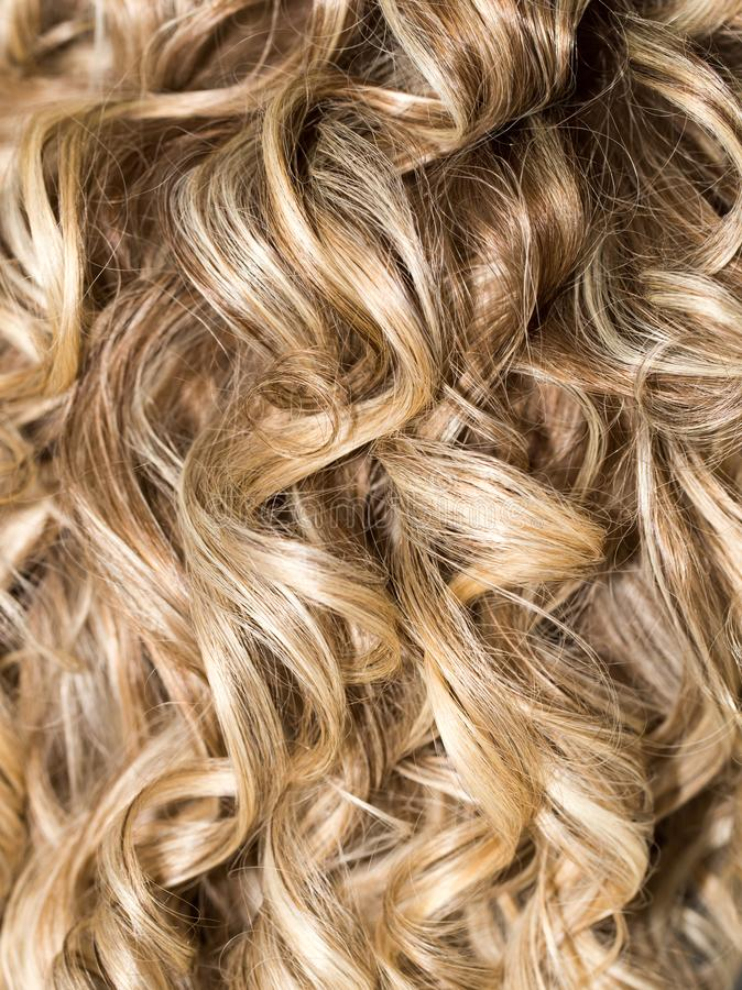 Cabelo Curly hairdressing onda Cabelo natural foto de stock royalty free