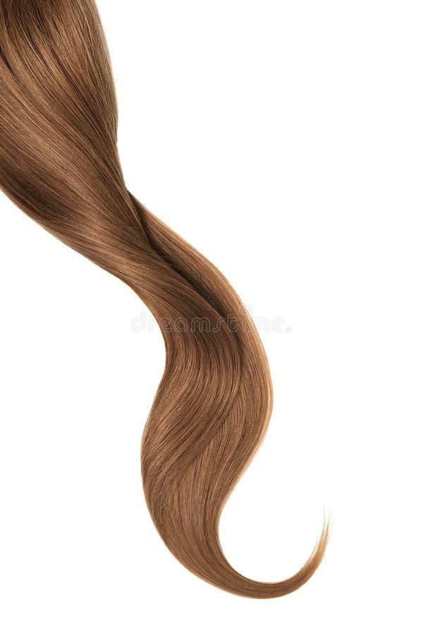 Cabelo de Brown, isolado no fundo branco Rabo de cavalo ondulado longo fotos de stock